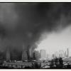 911 landscape